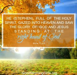Stephen saw the glory of the Lord